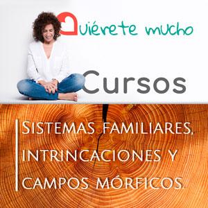 QM_Cursos_RRSS_Febrero2021web